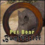 Pet Boar
